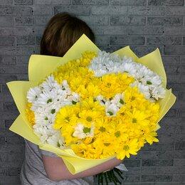 Цветы, букеты, композиции - Букет из желтых хризантем, 0