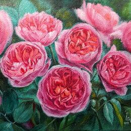 Картины, постеры, гобелены, панно - Роза. Масло, картина, цветы, сад, букет,розовый, 0