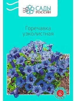 Рассада, саженцы, кустарники, деревья - Горечавка Узколистная (Сады России), 0