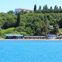 Туры - Путевки в детские лагеря на Черном море, 0