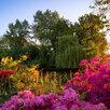 Семена декоративных и экзотических растений по цене 200₽ - Семена, фото 1