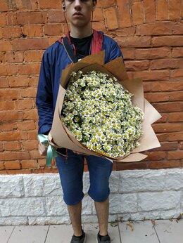 Цветы, букеты, композиции - Букет из ромашек, 0