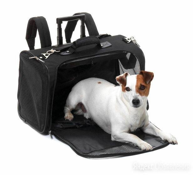 2 переноски для кошек и собак: Умная тележка 5-в-1 по цене 3900₽ - Транспортировка, переноски, фото 0