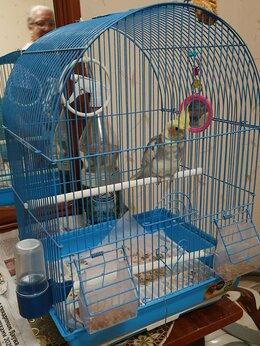 Клетки и домики - Большая клетка для птиц, 0