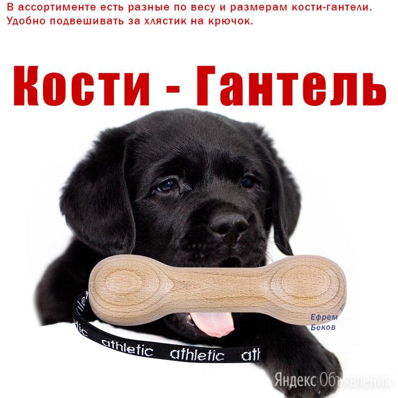 Гантель для собак игрушка из дерева кости Аппортная палка с ремешком удобно  по цене 200₽ - Аксессуары для амуниции и дрессировки , фото 0