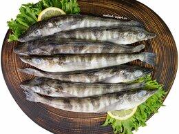 Продукты - Ледяная рыба, свежемороженая, неразделанная, 500…, 0