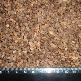 Семена - Продам семена эспарцет - сорт ПЕСЧАНЫЙ 1251, 0