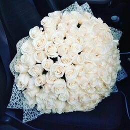 Цветы, букеты, композиции - 51 роза букет, 0