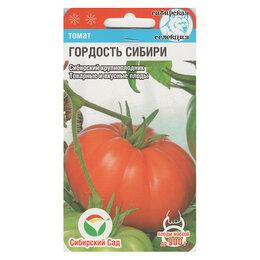 Семена - Гордость Сибири Томат 20шт СС Сибирский сад, 0