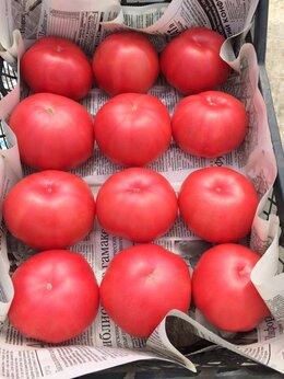 Семена - Семена томата Корнабель Ругантино Пинк Маргари…, 0