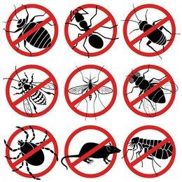 Сфера услуг - Уничтожение насекомых и грызунов., 0