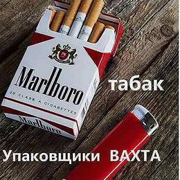 Табачные изделия вакансии нижний новгород получить лицензию на продажу табачных изделий в россии 2020 как