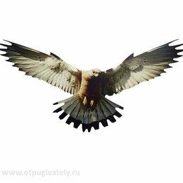 Отпугиватели и ловушки для птиц и грызунов - Визуальный отпугиватель птиц «Хищник-5» новый, 0