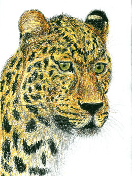 """Картины, постеры, гобелены, панно - Рисунок """"Леопард"""" картина масляная пастель…, 0"""