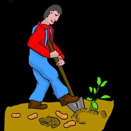 Бытовые услуги - Копать прополоть огород землю. скосить траву в Артеме, 0