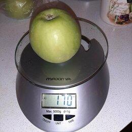 Кухонные весы - Весы бытовые на кухню., 0