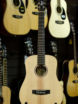 Акустические и классические гитары - EARTH-MINI-OP Earth Series Акустическая гитара…, 0