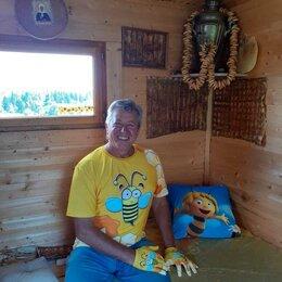 Устройства, приборы и аксессуары для здоровья - Добрая Пасека мед.  Сон на пчелах., 0