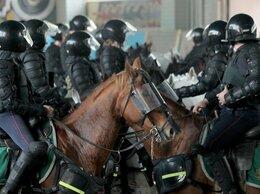 Полицейский - Полицейский - Кавалерист, 0