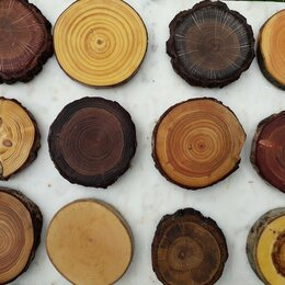 Рукоделие, поделки и сопутствующие товары - Спил дерева для декора деревянные кружочки спилы с дыркой, 0