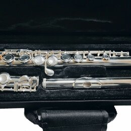 """Флейты - Флейта """"С"""" BRAHNER F-105S , 0"""