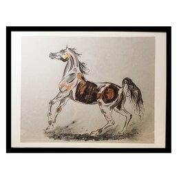 Картины, постеры, гобелены, панно - картина «Арабская лошадь», 0