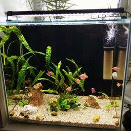 Аквариумы, террариумы, тумбы - аквариум 69 литров, 0