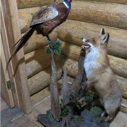 Рога, шкуры, чучела животных - Чучело лисы, 0
