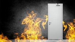 Входные двери - двери противопожарные, 0