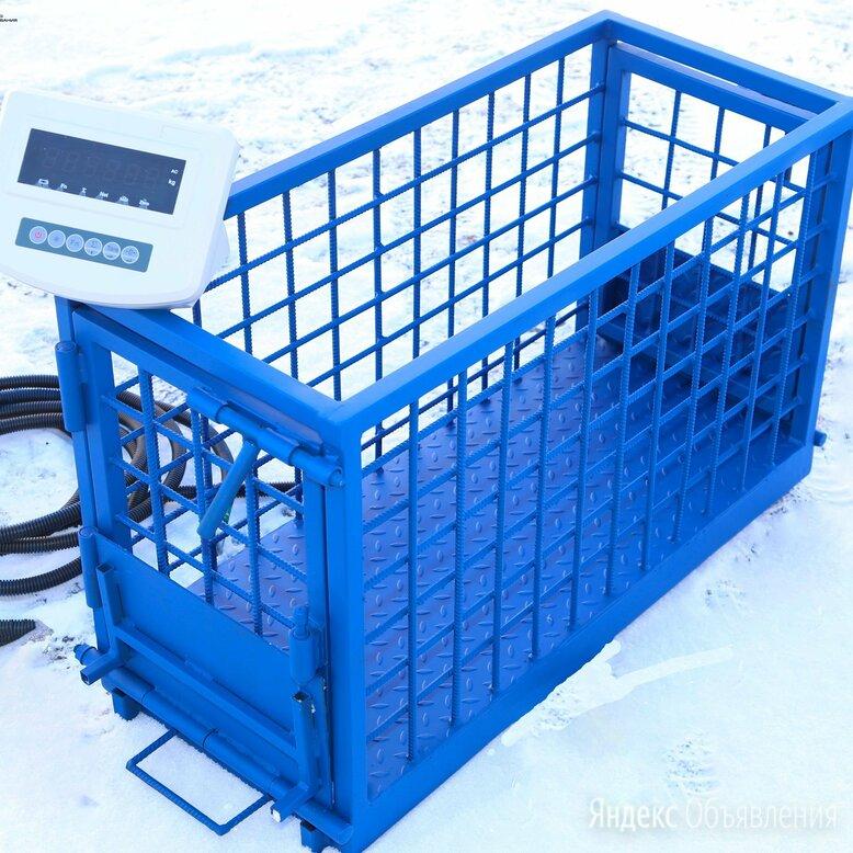 Весы для животных. Напольные весы для КРС ВП-С 1500 кг (1.5 тонны) по цене 66500₽ - Прочие товары для животных, фото 0