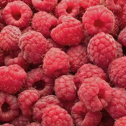 Продукты - Малина ягоды, 0