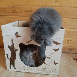 Лежаки, домики, спальные места - Домик для кошек, 0