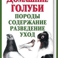 """Прочее - Книга """"Домашние голуби. Породы, содержание, разведение, уход"""", 0"""