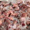 Мясо для Собак по цене 30₽ - Прочие товары для животных, фото 1