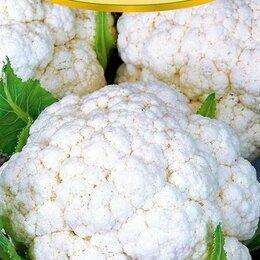 Семена - Семена капусты. Разные сорта. Интернет-магазин семян овощей и цветов, 0