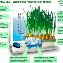 Аксессуары и средства для ухода за растениями - Луковое Счастье чудо грядка выращиватель зелёного лука на подоконнике, 0