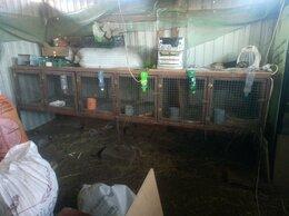 Клетки и домики  - Клетка для кроликов и нутрий, 0
