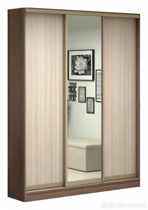 Шкаф-купе Антонио-3 1700x496x2300 мм по цене 34554₽ - Мебель для кухни, фото 0