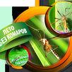 Ультразвуковой отпугиватель комаров Торнадо ОК 01 электронный для дома по цене 2800₽ - Отпугиватели и ловушки для птиц и грызунов, фото 7