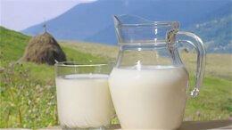Продукты - молоко козье, 0