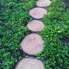 Тротуарная плитка деревянные круги по цене 190₽ - Тротуарная плитка, бордюр, фото 6