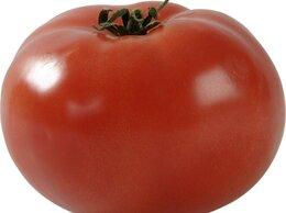 Семена - Берберана томат , 0