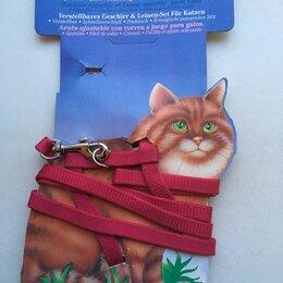 Шлейки и ошейники  - Набор: шлейка регулируемая+поводок для кошек , 0