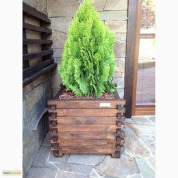 Садовые фигуры и цветочницы - Деревянные Кадки Кашпо Кадушки для декоративных растений, 0