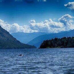 Экскурсии и туристические услуги - Тур на Телецкое озеро 2 дня, 0