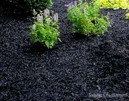 Щепа декоративная черная по цене 420₽ - Субстраты, грунты, мульча, фото 0
