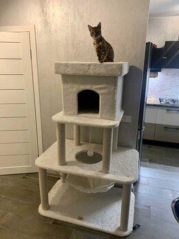 """Когтеточки и комплексы  - Игровой комплекс для кошек """"Биг бен"""", 0"""