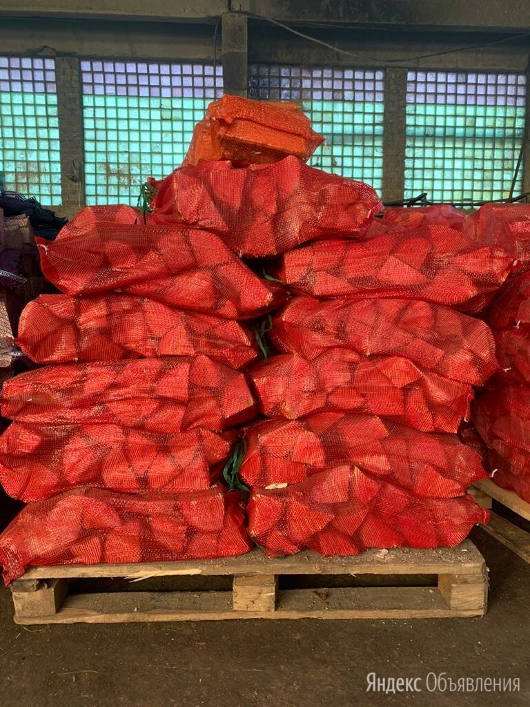 Дрова Сухие в Сетках по цене 140₽ - Дрова, фото 0