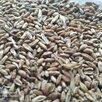 кормовая пшеница по цене 13900₽ - Прочие товары для животных, фото 1