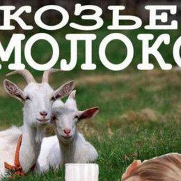 Продукты - Козье молоко и домашняя продукция из козьего молока. , 0